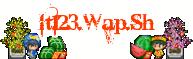 It123.Wap.Sh